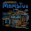 San Sebastian (Radio Version) [feat. Doug Michels, Miami Symphonic Studio Orchestra, Roberto Perera, Dan Warner & Ariel Garcia]
