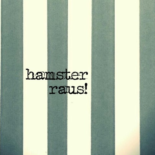 hamster raus