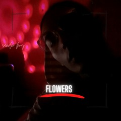 sandio boy ''flowers'' (instrumental)