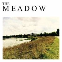 The Meadow   Reflections