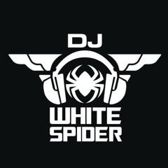 Mini Mix Live Mix 2020 - Dj White Spider