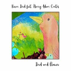 Bird and Flower (Piano Instrumental feat Henry Adam Curtis)