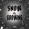 Download Snow & Growing Mp3
