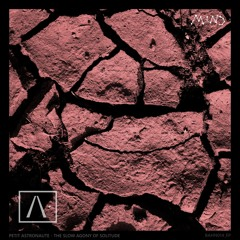Petit Astronaute - The Slow Agony of Solitude EP Preview (Linear System & ASH rmxs)  | BAHN014_EP