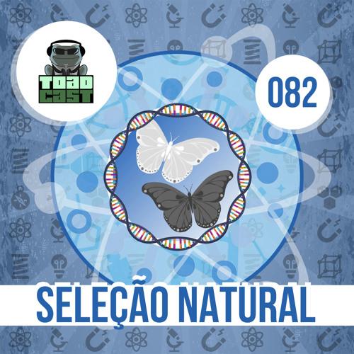 082 — Como Funciona a Seleção Natural?