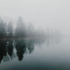 Walk in Fog (Caustic 3)
