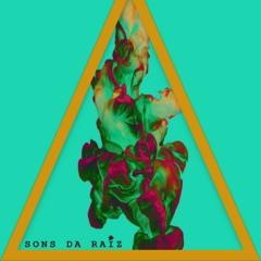 Sons Da Raiz#1 - 360
