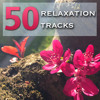 Theta Waves (Music for Concentration and Deep Meditation)