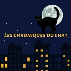 Souvenir - Les Chroniques Du Chat #0 Pilote - Les Guignols De L'Info (2017)