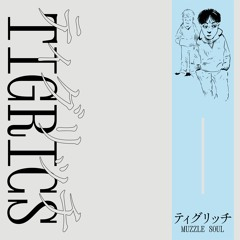 tigrics - Phaser Orange