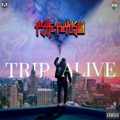 PsyFi Piiyushh - TRIP ALIVE (Original Mix)   HOUSE