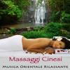 Musica di Sottofondo (Massage Music)