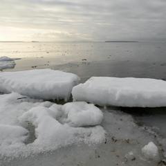 Snoring Sea Ice - 28/1/2021 - Loukkeennokka Shore