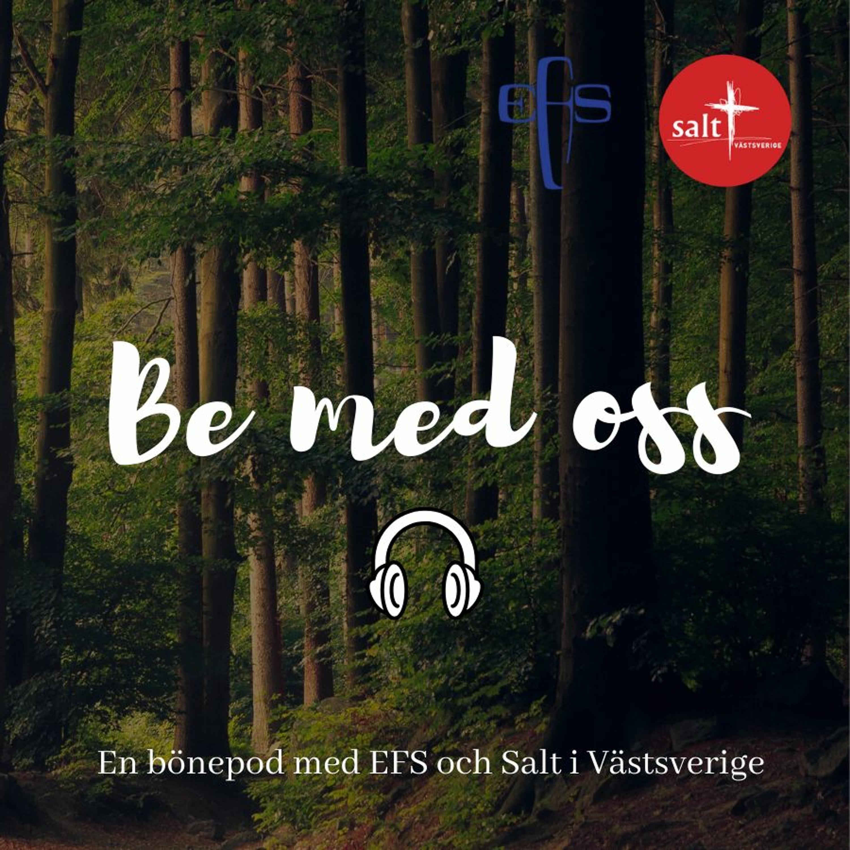EFS & Salt Västsverige