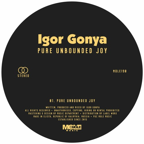 PREMIERE: Igor Gonya - Pure Unbounded Joy [Mole Music]