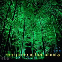 The Portal In The Woods @DEEP PLAYA  VT  5.16.21