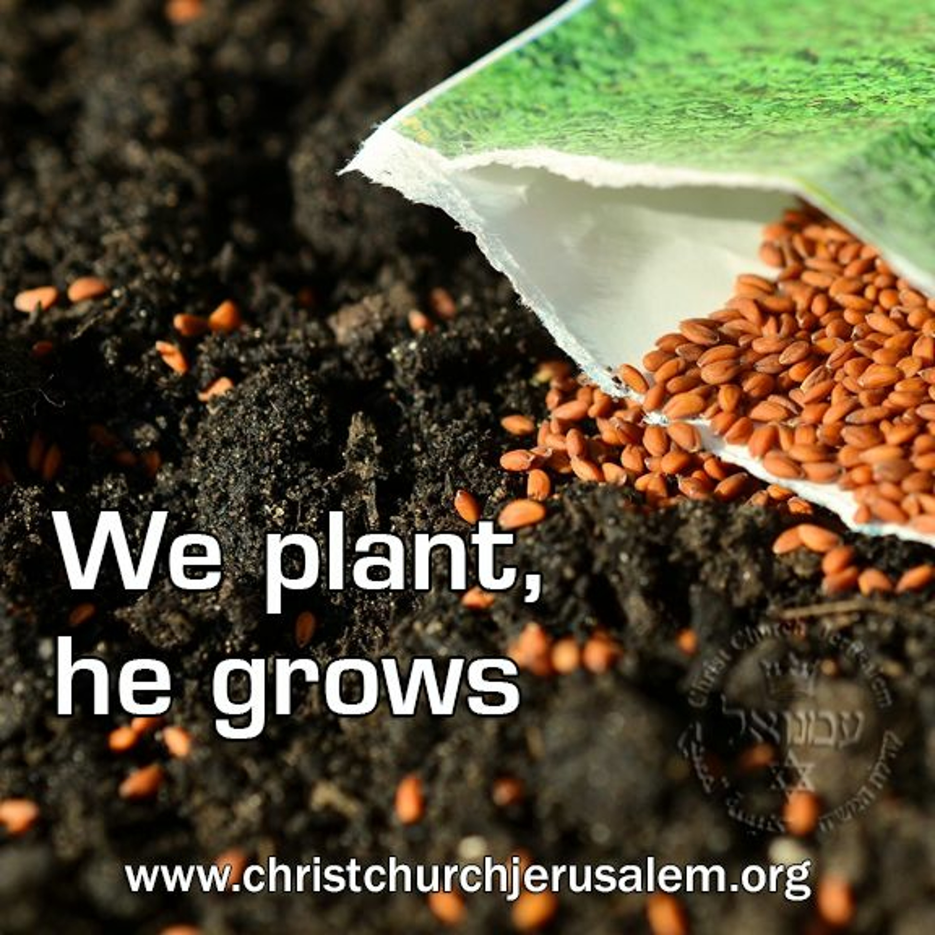 We plant, he grows