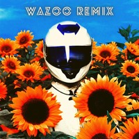Whethan - In The Summer (feat. Jaymes Young) [WAZOO Remix]