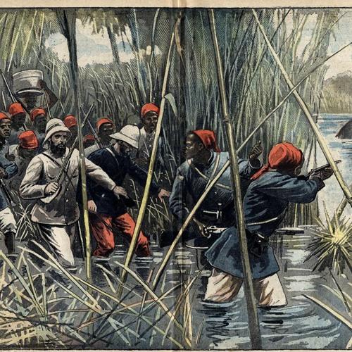 Le Castar des Tropiques