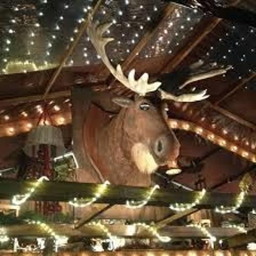 Sprechender Weihnachts-Elch