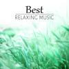 Healing Sleep Music
