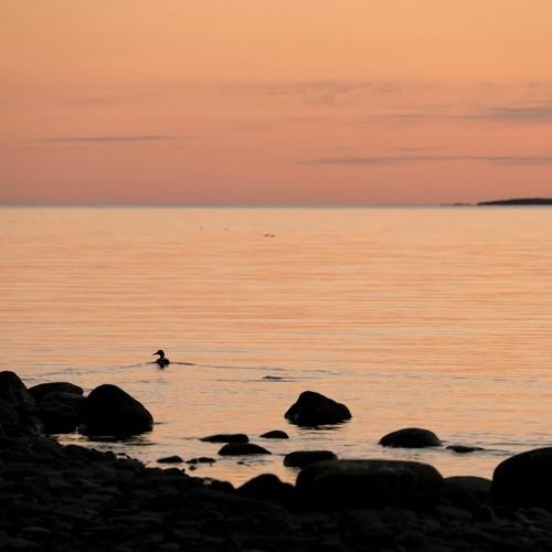 Morning by Rengaskari Reef - 20/4/2021 - Makholma Finland