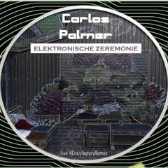 ELEKTRONISCHE ZEREMONIE (Live DJ Set @CRAZYFACtORYRENNES - 6/12/21) -