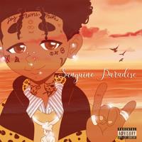 Cover mp3 Sanguine Paradise