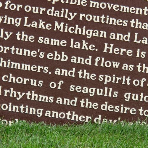 "Paul Druecke - ""Shoreline Repast"""