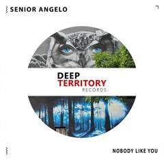 Senior Angelo - Nobody Like You (Original Mix)