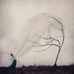 Branches Of Your Soul   /   Ft. Mirjam Keijnemans