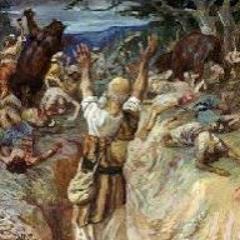 NIMROD - 2020 - MIRICALS OF ELISHA