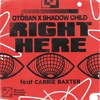 Otosan x Shadow Child - Right Here (feat Carrie Baxter)