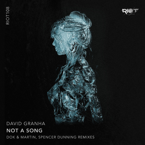 Not a Song (Dok & Martin Remix)