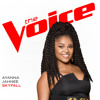 Skyfall (The Voice Performance)