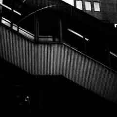 La construction sociale de l'espace humain. Michel Lussault