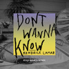 Don't Wanna Know (Ryan Riback Remix) [feat. Kendrick Lamar]