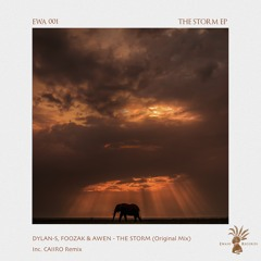 DHSA Premiere: Dylan-S, Foozak & Awen - The Storm (Original Mix)