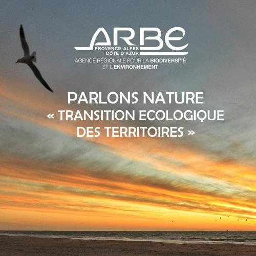 Interview d'Audrey MICHEL,  Directrice de la Transition écologique des territoires de l'ARBE