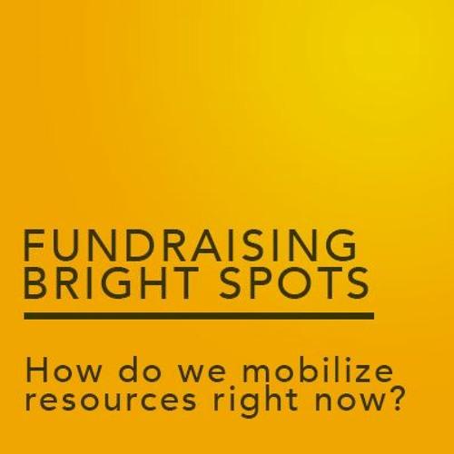 Fundraising Bright Spots 2020: Session 1