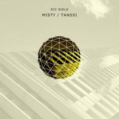 PREMIERE: Ric Niels - Misty [Symmetric]