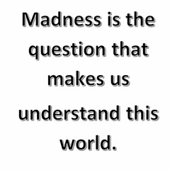 Madness is the question that makes us understand this world