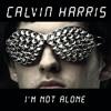 I'm Not Alone (Burns Rewerk)