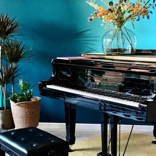 Michiel Roosen - The Home Recordings 2020