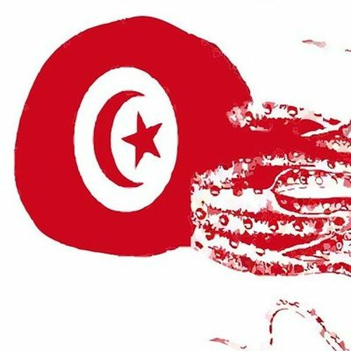 Tunisie: le long chemin de la transition