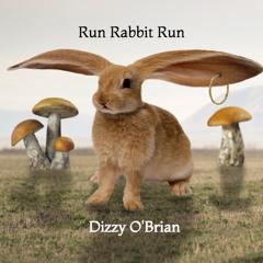 Run Rabbit Run-Classical Fusion Music