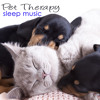 Pet Therapy (Relaxation Music, Rain Sound for Deep Sleep)