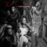 Track 02 Wonder (The Conversation)
