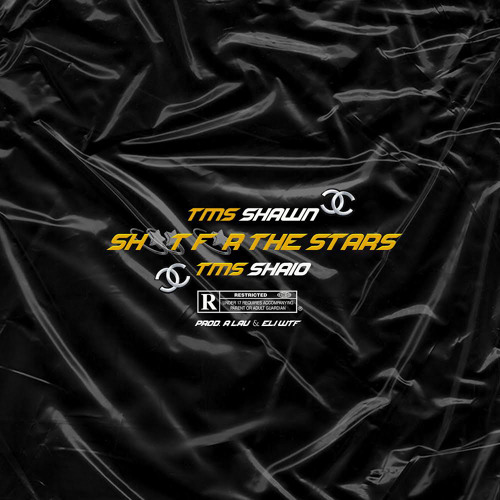 SHOOT FOR THE STARS (feat. TMS Shaio) [prod. A Lau & Eli WTF]