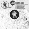 Flamenco (Pierre Braun Remix)